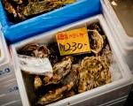 Tsukiji - 11