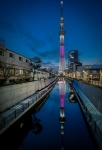Vertical_Sakura_Skytree