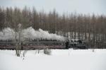 MBT_7698